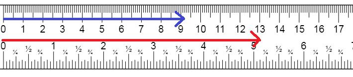 ペニスサイズを示した定規